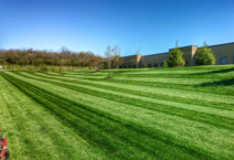 Commercial Grounds care is much more than just mowing a lawn. LANDFORM understands your landscape is the first thing your customers see. Make a positive first impression!
